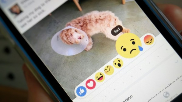 رسمياً .. فيس بوك تبدأ إختبار زر Dislike