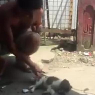 فيديو | رجل ينقذ حياة جرو صغير بموقف أقرب إلى المعجزة
